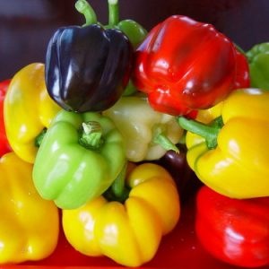 Hạt giống rau củ quả