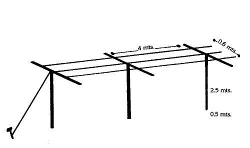 Minh họa kiểu giàn chữ T cho chanh dây